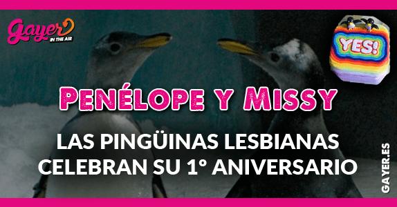 Las pingüinas lesbianas Penélope y Missy celebran su primer aniversario